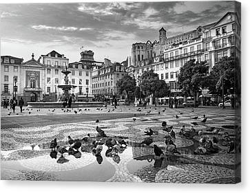 Rossio Square In Downtown Lisbon Canvas Print by Carlos Caetano