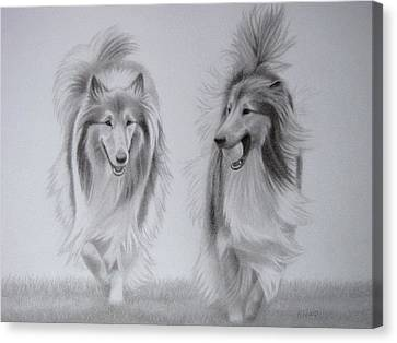 Rough Collie Sisters Canvas Print by Karen Wood