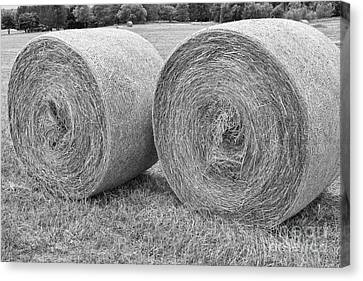 Round Hay Bales Black And White  Canvas Print by James BO  Insogna