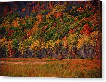 Round Valley State Park 2 Canvas Print by Raymond Salani III