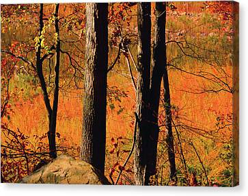 Round Valley State Park 3 Canvas Print by Raymond Salani III