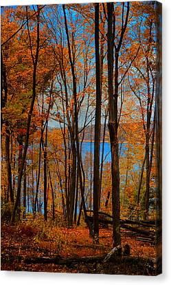 Round Valley State Park 5 Canvas Print by Raymond Salani III