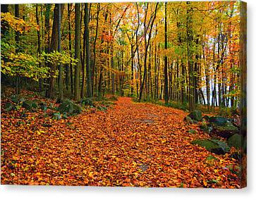 Round Valley State Park 6 Canvas Print by Raymond Salani III