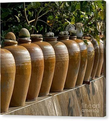 Row Of Pickling Jars Canvas Print by Yali Shi
