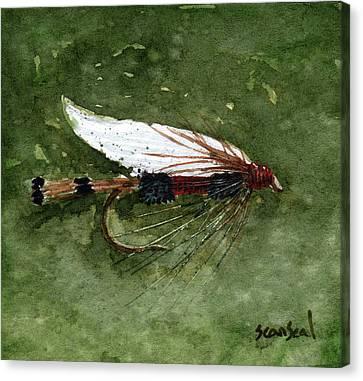 Royal Coachman Wet Fly Canvas Print by Sean Seal