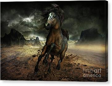 Run Like The Wind Canvas Print by Shanina Conway