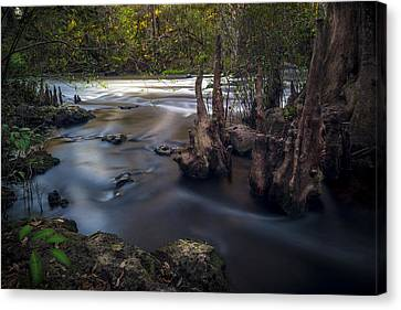Run Swiftly Canvas Print by Marvin Spates
