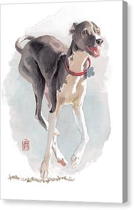 Running Italian Canvas Print by Debra Jones