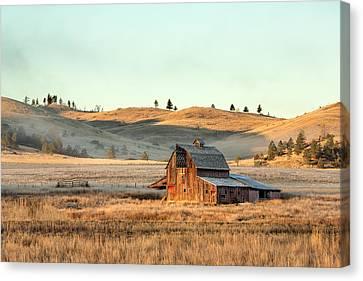 Rural Decay Canvas Print by Todd Klassy