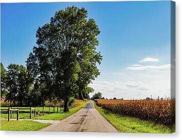 Rural Indiana Canvas Print by Mountain Dreams