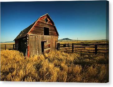Rural Noir Canvas Print by Todd Klassy