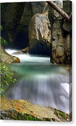 Rushing Water Canvas Print by Marty Koch