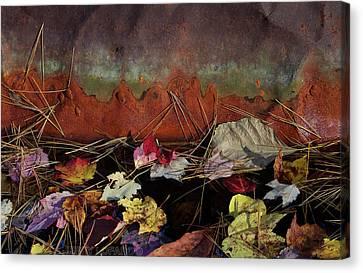Rust Canvas Print by Jerry LoFaro