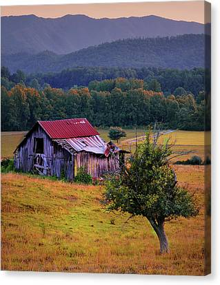 Rustic Barn - Wears Valley Tennessee Canvas Print by Thomas Schoeller