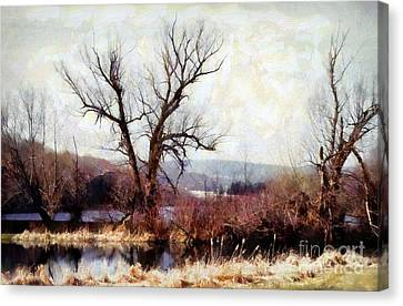 Rustic Reflections Canvas Print by Janine Riley