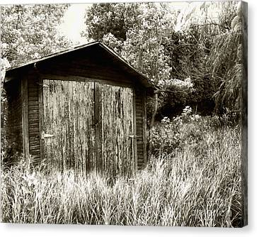 Rustic Shed Canvas Print by Perry Webster