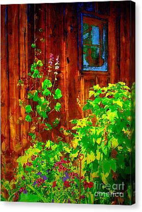 Rustic Summer Shed Canvas Print by Christine S Zipps