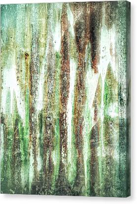 Rusty Metal Background  Canvas Print by Tom Gowanlock