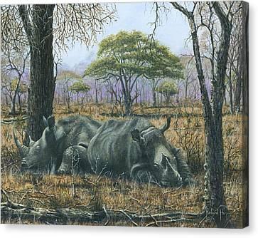 Sabi Sand Siesta Canvas Print by Richard Harpum
