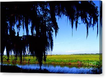 Sabine National Wildlife Refuge Canvas Print by Thomas R Fletcher