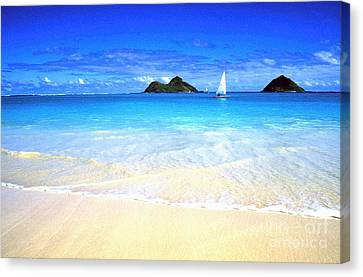 Sailboat And Islands Canvas Print by Thomas R Fletcher