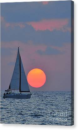 Sailboat At Sunset  Canvas Print by Shay Levy