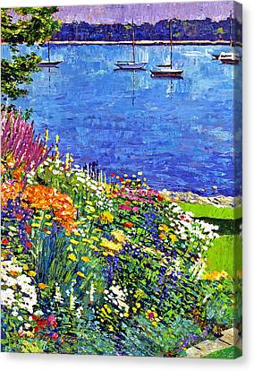 Sailboat Bay Garden Canvas Print by David Lloyd Glover
