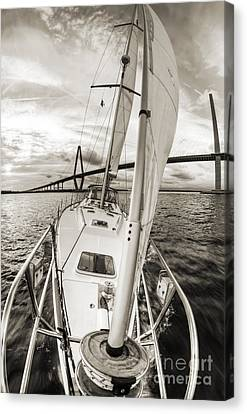 Sailboat Sailing Past Arthur Ravenel Jr Bridge Charleston Sc Canvas Print by Dustin K Ryan