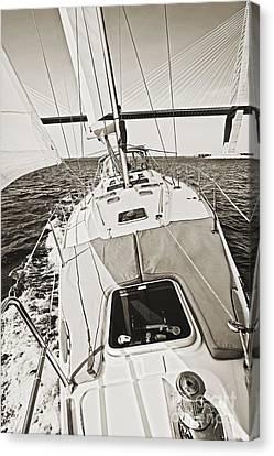 Sailing Sailboat Charleston Sc Bridge Canvas Print by Dustin K Ryan