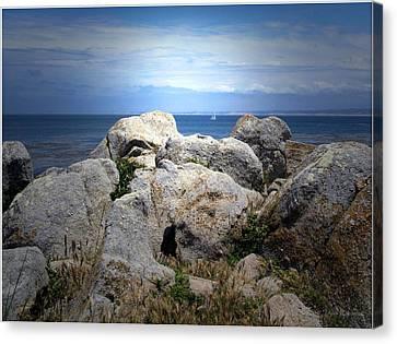 Sailing The Peninsula Canvas Print by Joyce Dickens