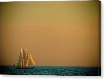 Sails Canvas Print by Sebastian Musial