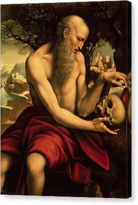 Saint Jerome Canvas Print by Cesare de Sesto