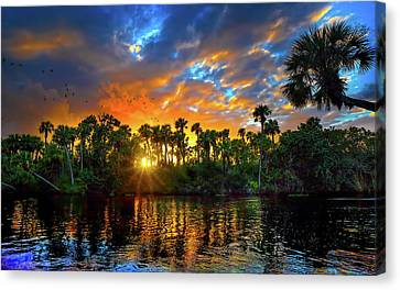 Saint Lucie River Sunset Canvas Print by Mark Andrew Thomas