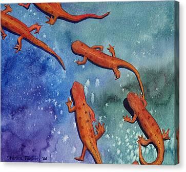 Salamanders Canvas Print by Sharon Farber
