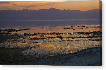 Salton Canvas Print by Skip Hunt