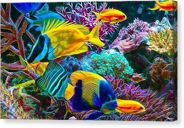 Saltwater Fish Collection Canvas Print by Marvin Blaine