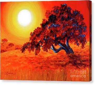San Mateo Oak In Bright Sunset Canvas Print by Laura Iverson