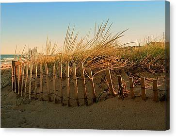 Sand Dune In Late September - Jersey Shore Canvas Print by Angie Tirado