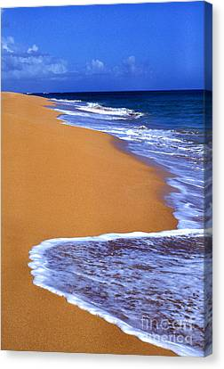 Sand Sea Sky Canvas Print by Thomas R Fletcher