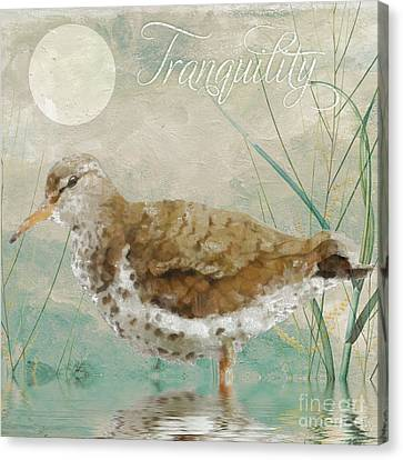 Sandpiper II Canvas Print by Mindy Sommers