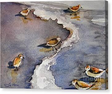Sandpiper Seashore Canvas Print by Julianne Felton