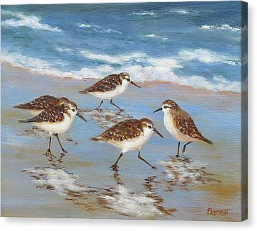 Sandpipers Canvas Print by Barrett Edwards