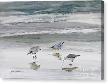 Sandpipers Canvas Print by Julianne Felton