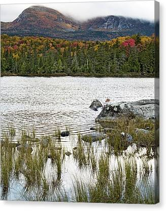 Sandy Stream Pond View Of Baxter Peak In Baxter State Park Maine Canvas Print by Brendan Reals