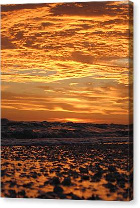 Sanibel Island Canvas Print by Nick Flavin