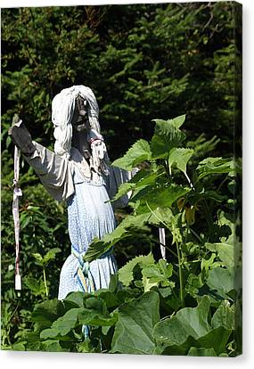 Scary Scarecrow Canvas Print by Marty Koch