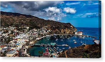 Scenic Catalina Island Canvas Print by Mountain Dreams