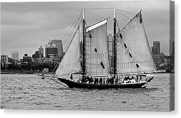 Schooner On New York Harbor 1bw Canvas Print by Sandy Taylor