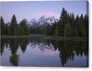 Schwabacher Canvas Print by Andrew Soundarajan