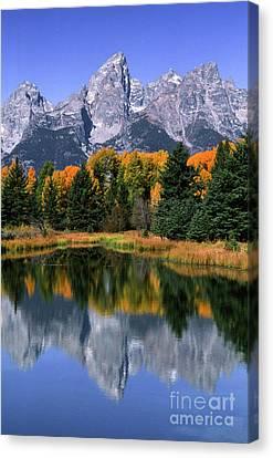 Schwabacher Landing -grand Teton Canvas Print by Sandra Bronstein